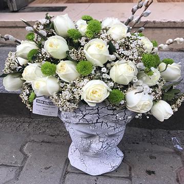 Helen Büst İçinde Beyaz Güller