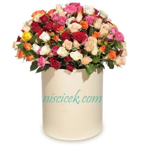 Kutuda Karışık Renk Çardak Mini Güller
