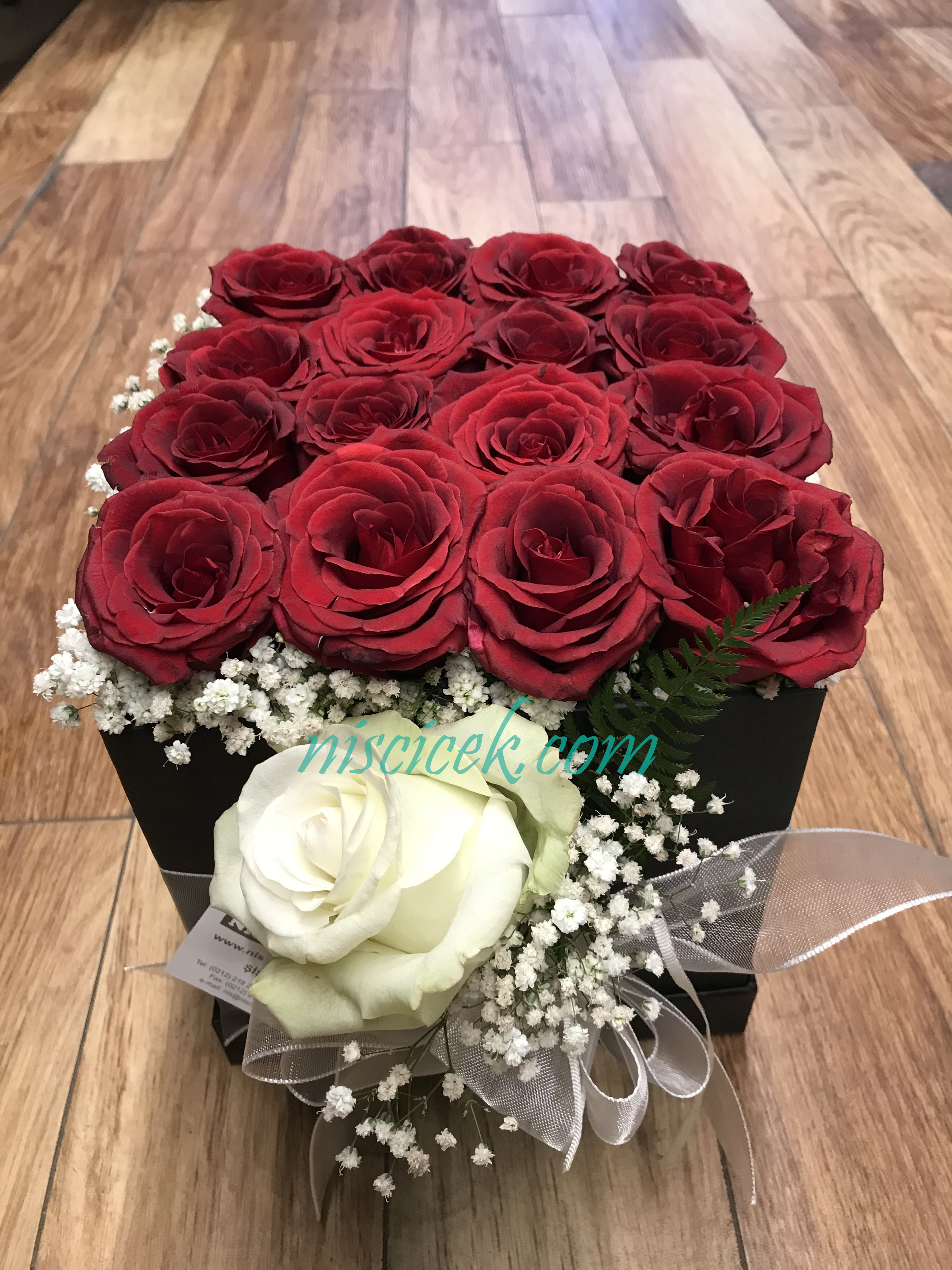 Kare Kutuda Kırmızı Güller ve Beyaz Gül