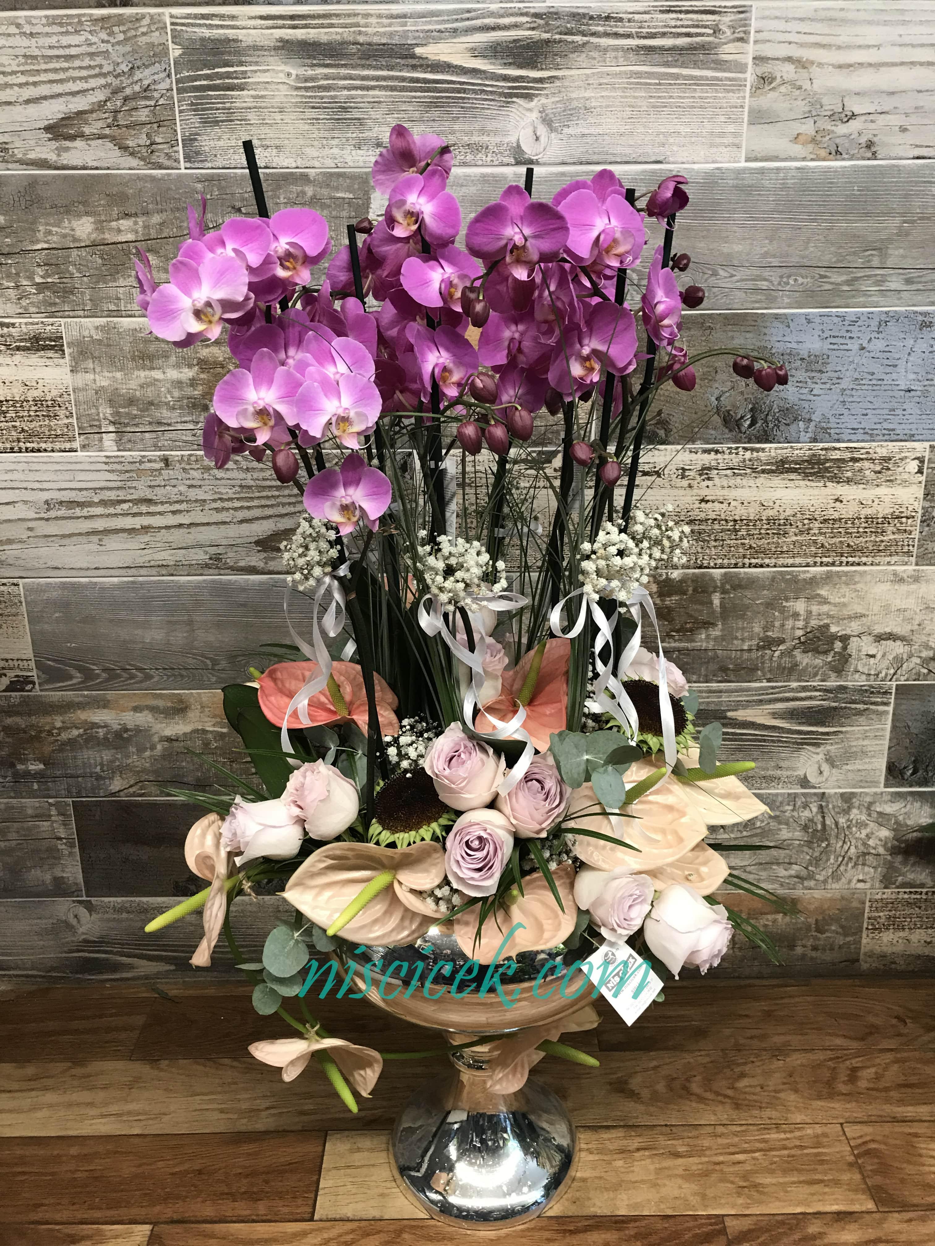 İthal Cam Vazoda 6 Köklü Mor Orkide Antoryum,Gül Tanzim - Ürün Kodu:721