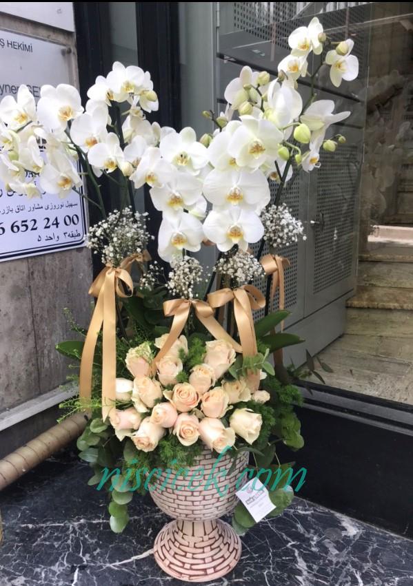 Seramik Saksıda 6 Köklü Beyaz Orkide 15 Adet Somon Gül Tanzim - Ürün Kodu:696