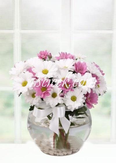 Cam Akvaryumda Pembe Beyaz Mevsim Çiçekleri - Ürün Kodu:576