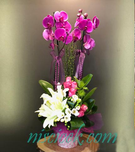 Seramik Saksıda 2 Köklü Orkide Lilyumlu Güllü Pembe Beyaz Tanzim - Ürün Kodu:691