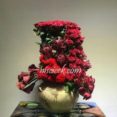 Seramik Saksıda Kırmızı Gül,Gala ve İthal Bitkiler - Ürün Kodu:589