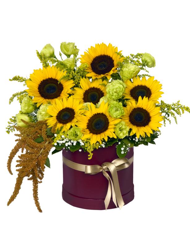 Kutu İçersinde Ay Çiçekleri