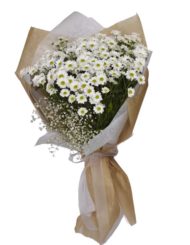 Büyük Beyaz Kır Çiçeği Buketi